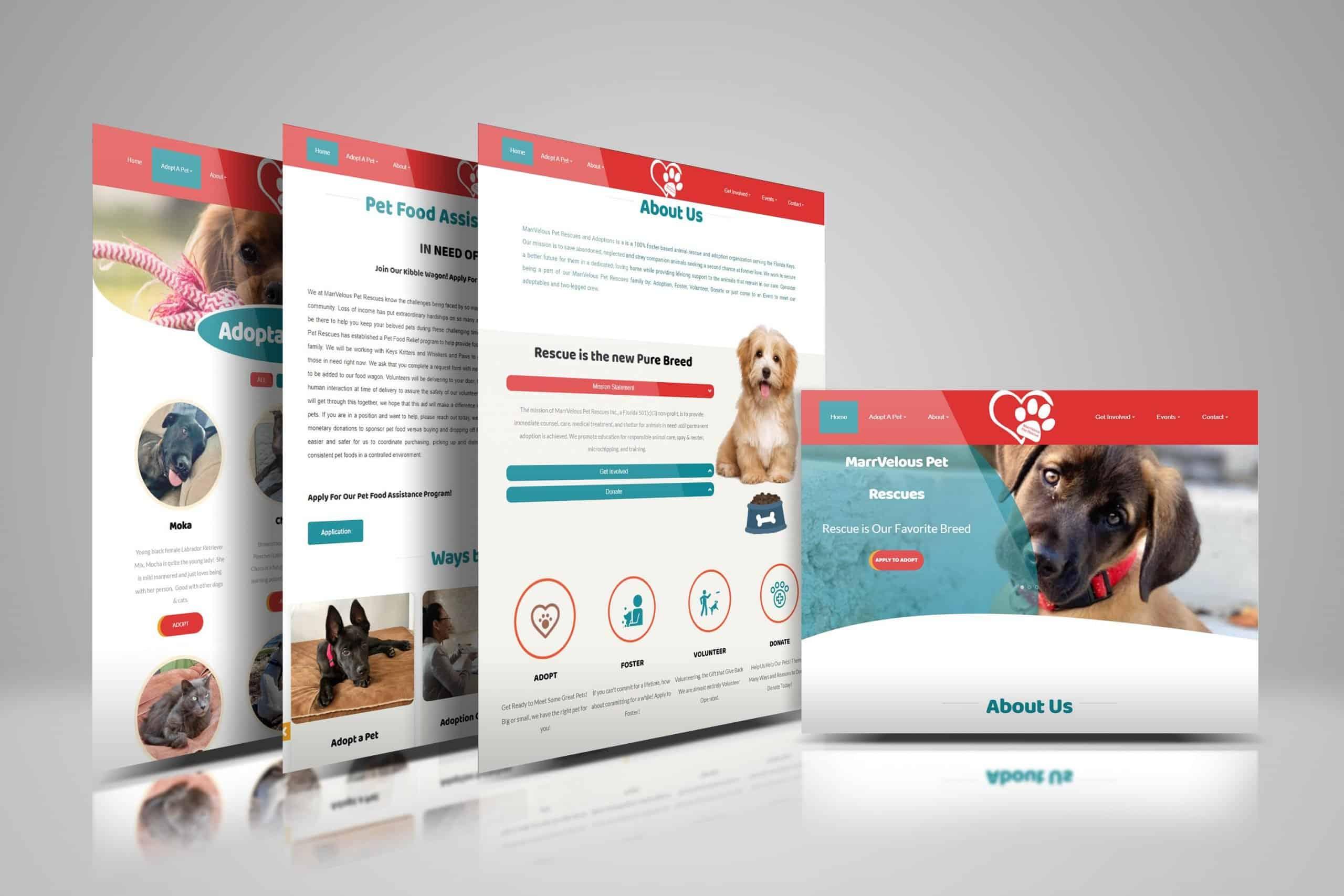 Website Design 1