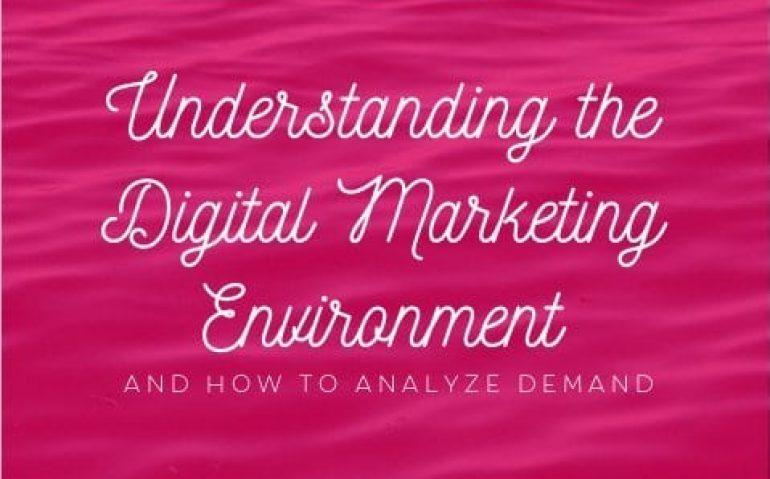 Understanding the Digital Marketing Environment